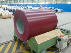 PPGI  Prepainted Steel Coils