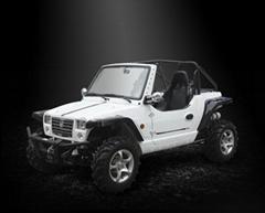 800cc 4×4 vehicle XYUTV800
