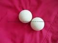 高純氧化鋁瓷球 3