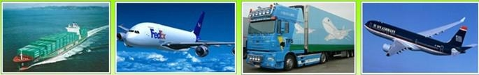 Global logistic air freight service forwarder 3