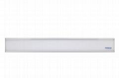 80*600 Flat Panel Light Y2