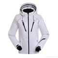 Mens And Womens Ski Jacket