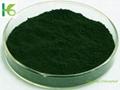 Sodium copper chlorophyllin 2