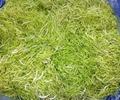 绿原酸 2