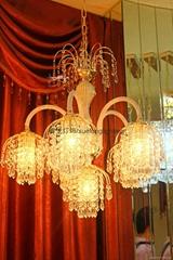 雪龍新款水晶吊燈6030