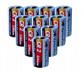 CR2 鋰錳柱式電池  3.0
