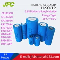 ER34615  Li -SOCl2  D型 锂亚硫酰氯电池 3.6V 1900mAh