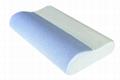 Breachable Contour Memory Pillow 4