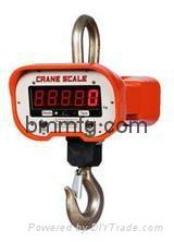 Crane scale 2