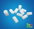 Plastic worm