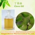 Natural Clove OIl distilled from clove