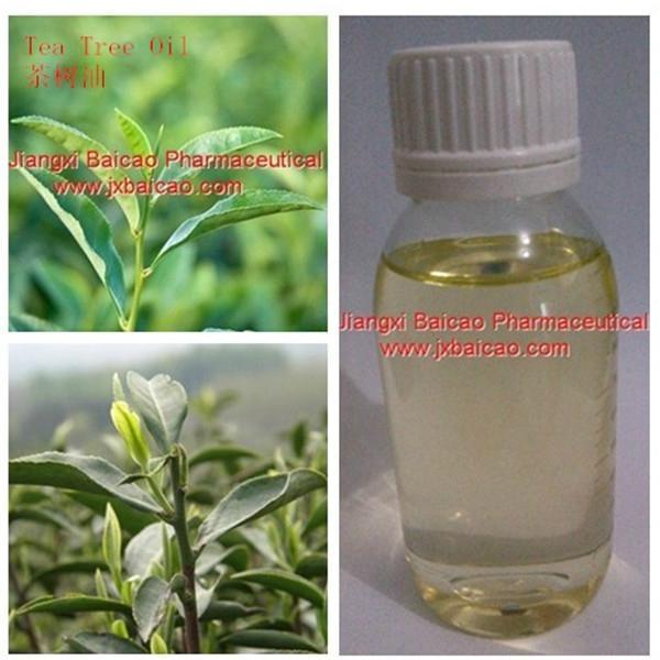 天然茶树油 3