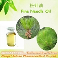 Natural Pine Needle Oil for Healthcare