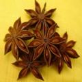 茴香油/八角茴香油GMP 厂家 3