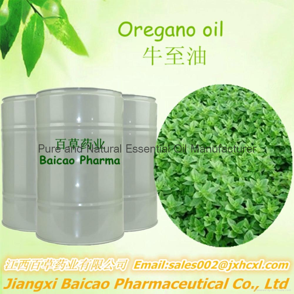 High Quality Essential Oils Oregano Oil with Carvacrol Feed additive 1