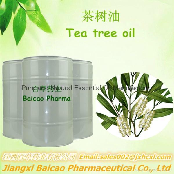 天然茶树油 1