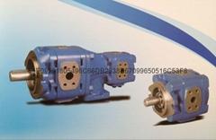 美国进口SUNNY内啮合齿轮泵 HG1-63-1R-VPC