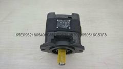 SUNNY内啮合齿轮泵 HG1-40-1R-VPC
