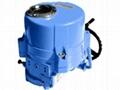 Electric Actuator of Motorized Va  e