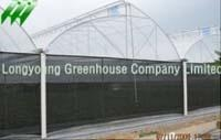 Saw Tooth Greenhouse