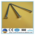 metal iron wire common nails