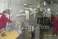 花生片帶式乾燥機