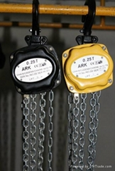 DE mini chain hoist 3 meters