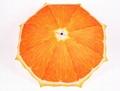 清新水果橙子遮阳创意三折礼品雨
