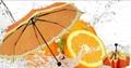清新水果橙子遮陽創意三折禮品雨傘 4