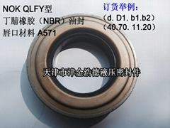 臺灣YEI品牌QLFY型端軸骨架油封