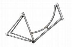 Cr-Mo Bicycle Frame