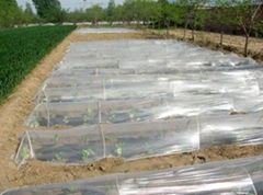 plastic mulching film for agricultural
