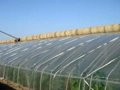 UV-anti 200micron Greenhouse film in Plastic film for sale