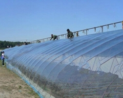 Best quality uv resistant plastic film for greenhouse