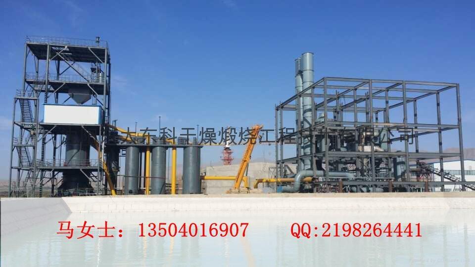 THDS碳酸镁煅烧炉东大东科干燥煅烧 3
