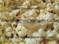 Popcorn making Machine/ Flavored Popcorn machine/caramel popcorn machine 3