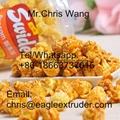 Popcorn making Machine/ Flavored Popcorn machine/caramel popcorn machine 4