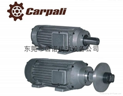 Carpali陶瓷石材切割电机