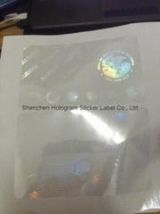 IL FL NJ KY MI TX state id overlay hologram