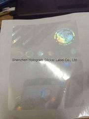 Overlay hologram