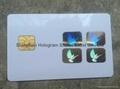 Globe mastercard hologram stickers