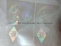 Delaware id hologram DE id overlay