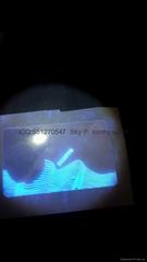 uv IL state overlay hologram Illinois uv hologram