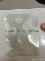 Florida state overlay ID hologram