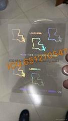 Mississippi/ Louisiana state overlay hologram LA overlay