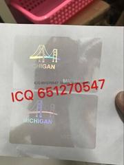 New Michigan ID state overlay MI overlay Michigan hologram