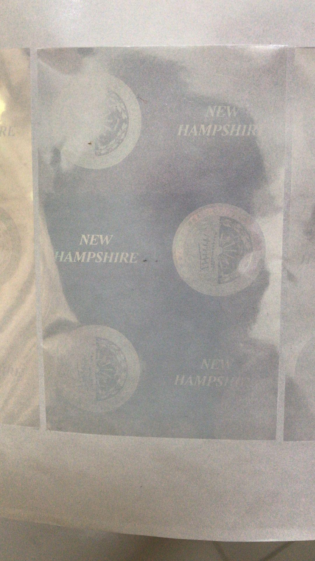 New Hampshire state overlay NH hologram  1