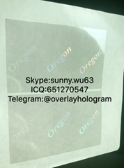 USA OR state overlay Oregon ID overlay