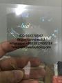 Indiana state overlay ID hologram