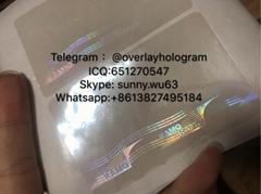New Canada RMAQ Overlay hologram